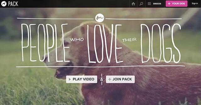 Packのサイトではかわいいわんちゃんの動画が次々に表示されます。画像よりも引きつけられますね。