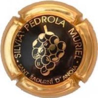 SILVIA PEDROLA MURIEL Viader 5070 X.10495