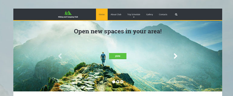 5 Modern Web Designs That Interfere with Conversions  Web Design Principles