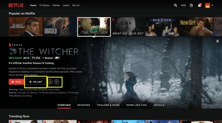 Netflix User Personalization