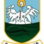 Annaduff GAA Crest