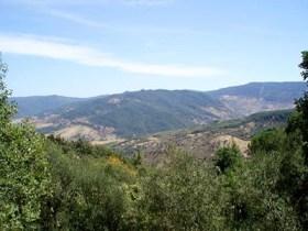 Jebel Chaambi (photo - TAP)