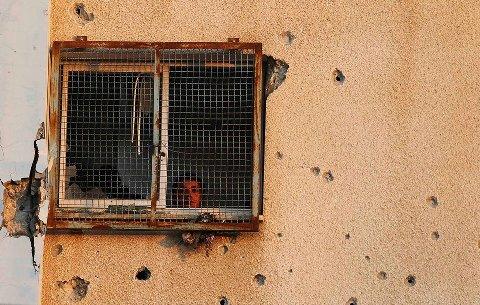 Crédit photo Al Quds  Gaza