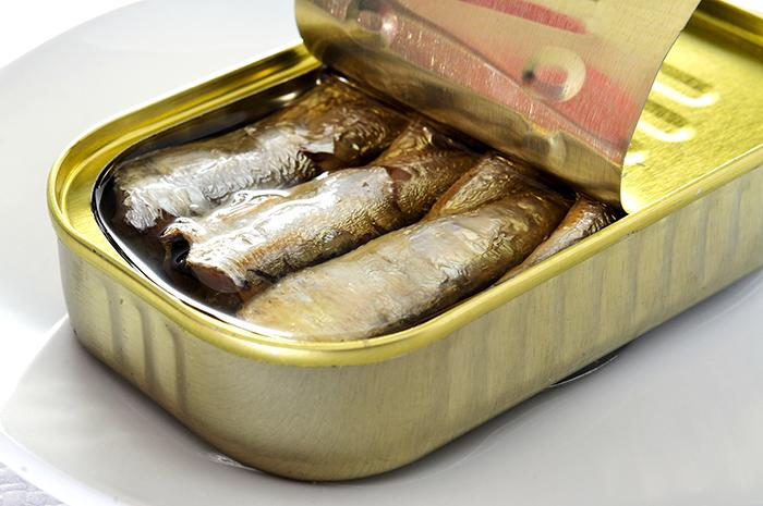 Tunisie  Une application pour tracer les sardines