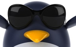 Google Penguin Update and How to Recover