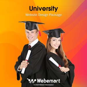 University Website Design Package Webemart Marketplace