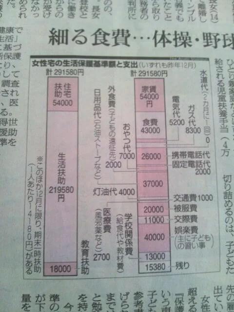 女性宅生活保護費291,580円の支出内訳