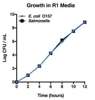 R1 Gram Negative Media (Microbiologique)