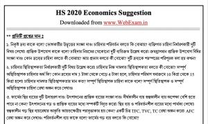HS 2020 Economics Suggestion demo