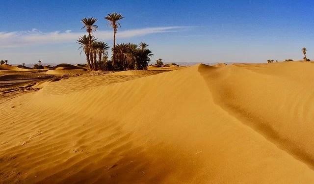 desert-safari-uae