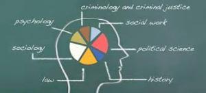 Otras salidas de estudiar criminología