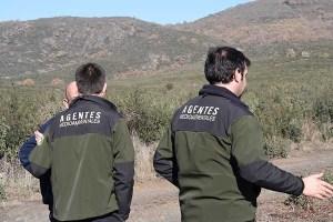 Oposiciones a agente forestal o guarda forestal