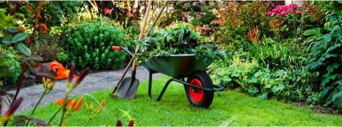 Aprender con los cursos gratuitos de jardineria