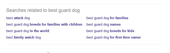 Related searches from Google