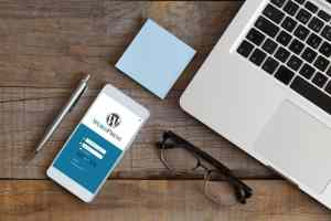 Vulnerabilidades en WordPress