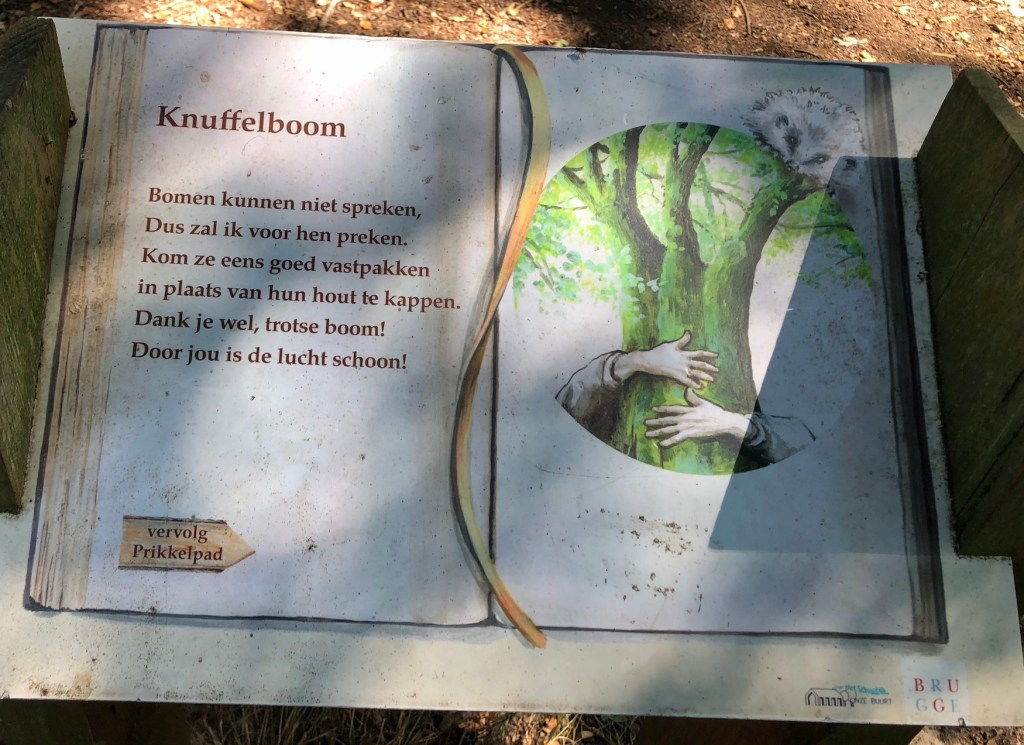 Knuffelboom