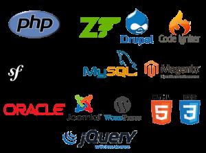 Web-design-Company-Weblancexperts Informatics