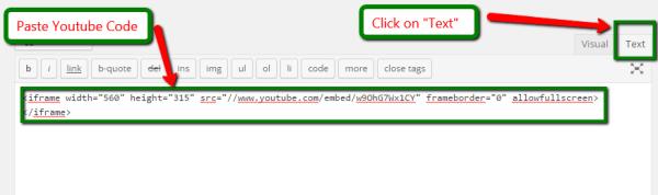 Youtubecode_blogfruit