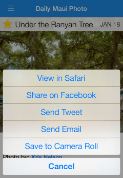 Share Options, iPhone Version