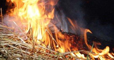 Пожар на брегот од Охридско Езеро, на потегот од Струга кон Калишта