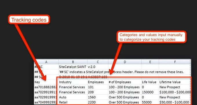 SAINT excel file example