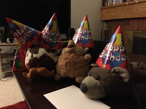 gem's birthday