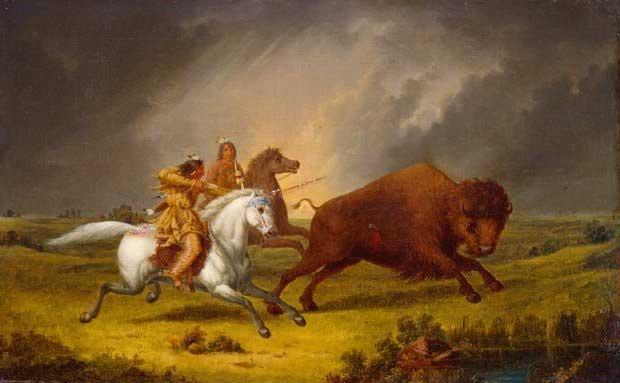 Horse in American Indian Culture