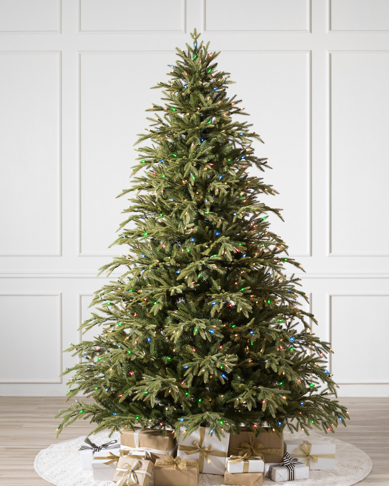 hight resolution of  brewer spruce tree child 1