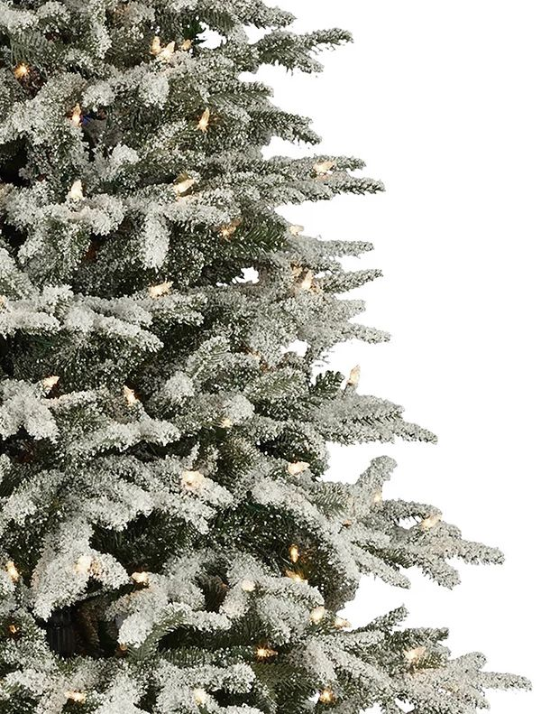 Frosted Fraser Fir Artificial Christmas Tree Balsam Hill