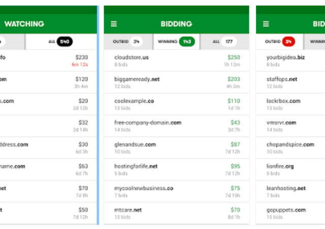 GoDaddy Launches Domain Investor App