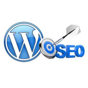 SEO - Wordpress Tune-Up - Web Pro NJ