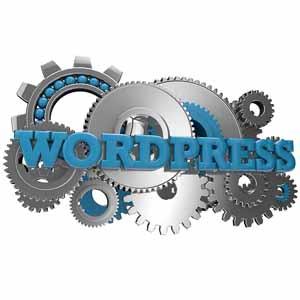 Wordpress Tune Up - Web Pro NJ