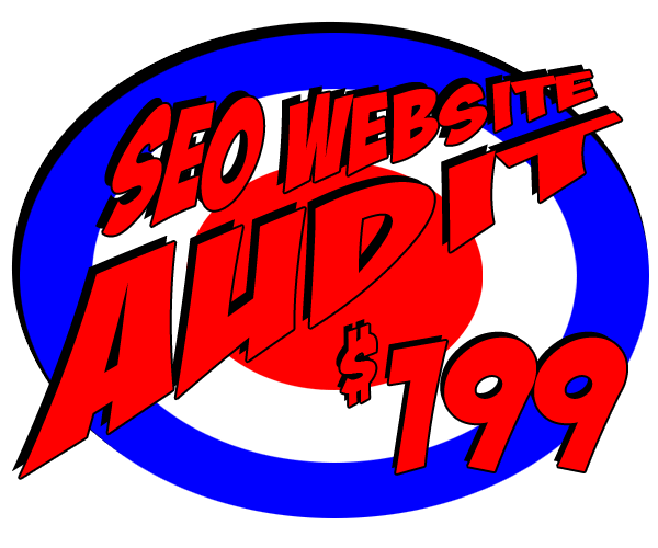 SEO Website Audit - Web Pro NJ