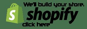 We build your Shopify store - Web Pro NJ