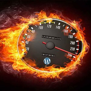 Wordpress Speed Optimization Service - WebProNJ