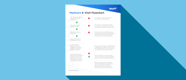 E-Visit Flowchart for Medicare and Commercial Insurance