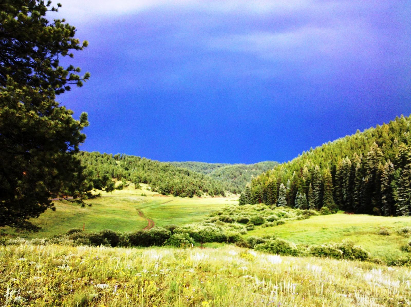 Conifer Community Park at Beaver Ranch  Conifer Colorado