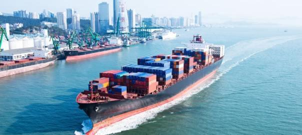 Expert Voices Cross Border Trade