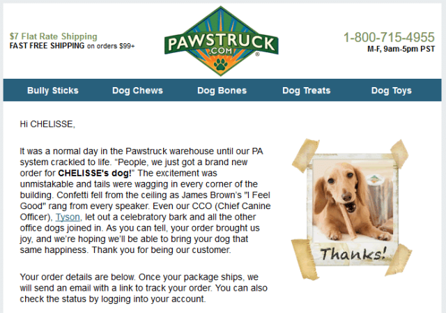 Pawstruck order confirmation email