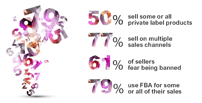 Amazon Sellers Survey 2016: The Results