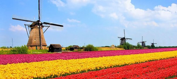 Ecommerce in the Netherlands: A Growing Opportunity?