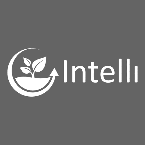 Intelli Bookkeeping