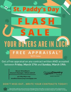 St. Paddys Day Flash Sale