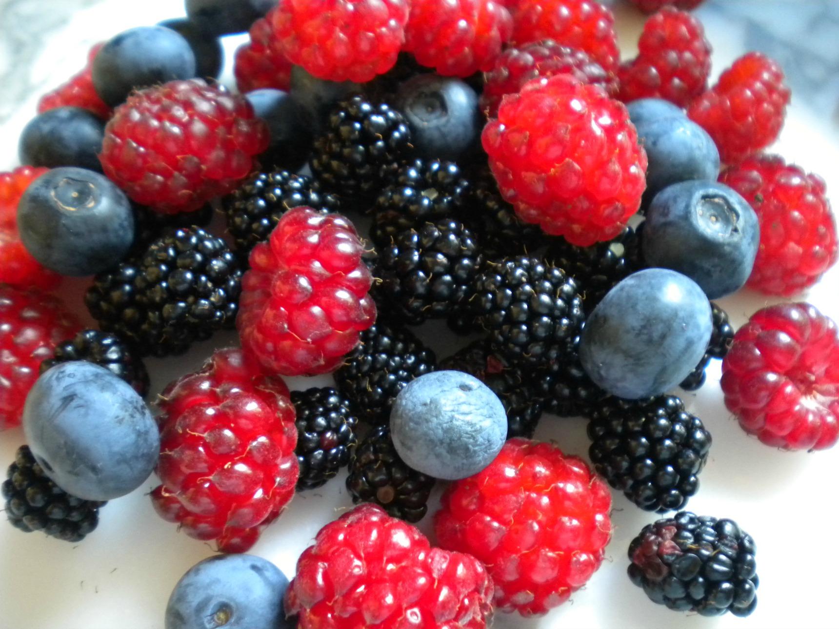 antioxidant berries which berries