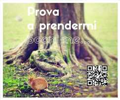 prova-a prendermi-websapp.it-jpeg
