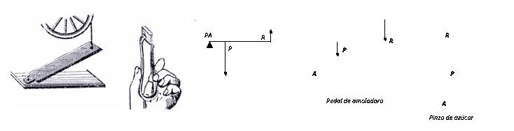 fisica3