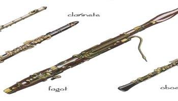 Instrumentos musicales de grupos indigenas de Panam  Webscolar