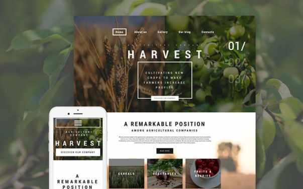 Outdoor Website Design