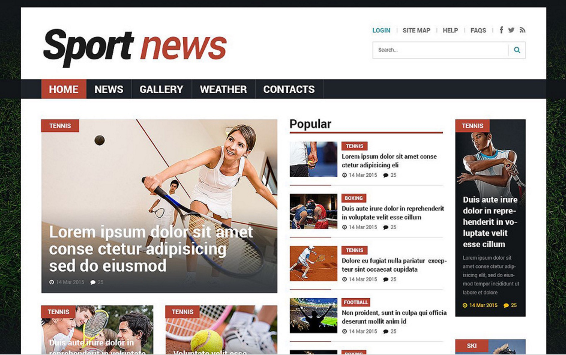 The Features of the Sports News Theme