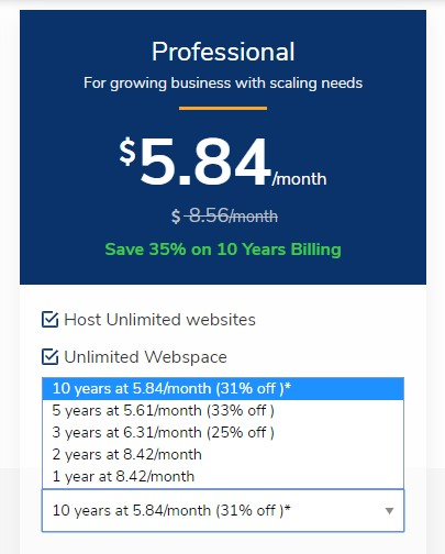 Web Hosting in India - ZNet Live prices